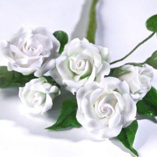 Blumen & Gum Paste